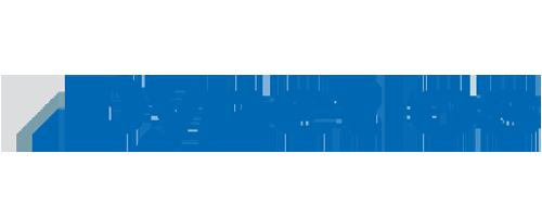 dynetics logo.png